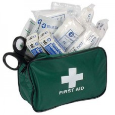 TRAVEL PCV/PSV First Aid kit in zip-top bag